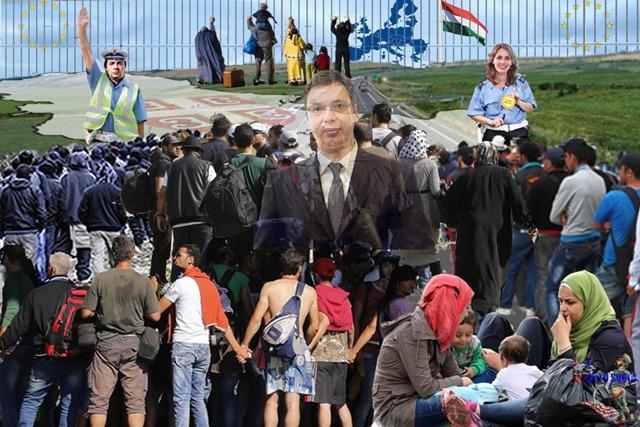 Србија прима мигранте упркос Корони, огромне групе прелазе границу?!(Видео доказ)