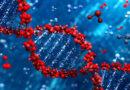 Наука доказала да су Христове ријечи уткане у ДНК сваког човјека