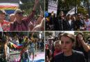 Љубиша Настић: Патологија хомосексуалности – прилог јавној расправи