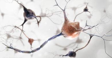 """Технологија """"неуро-модулације"""" на бази графена је СТВАРНОСТ"""